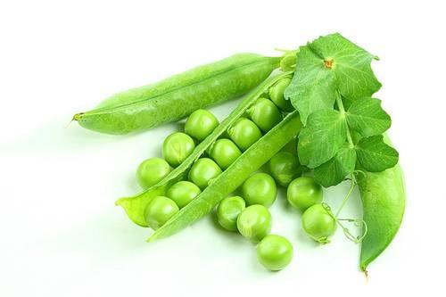 фото зелёный горошек